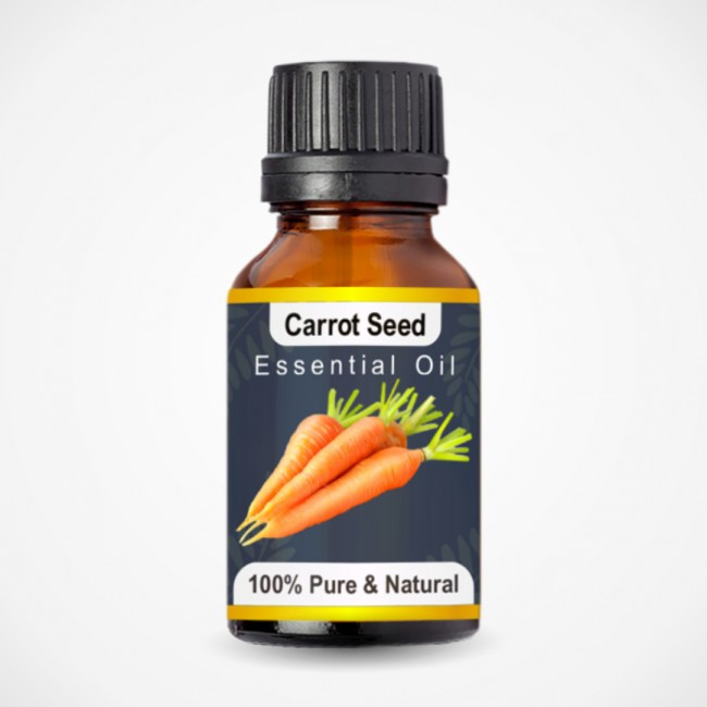 Carrot Seed Essential Oil (15ml)