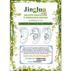 Jingluo Auriculo Therapy